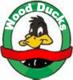 Wood ducks   copy